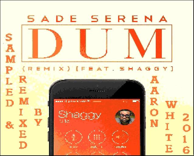 Aaron Shaggy New Song Dum